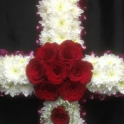 2ft & 3ft Cross